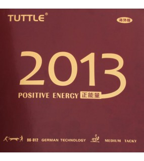 TUTTLE 2013 POSITIVE ENERGY