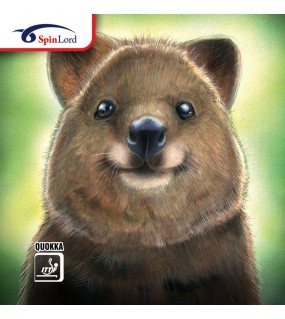 SPINLORD QUOKKA